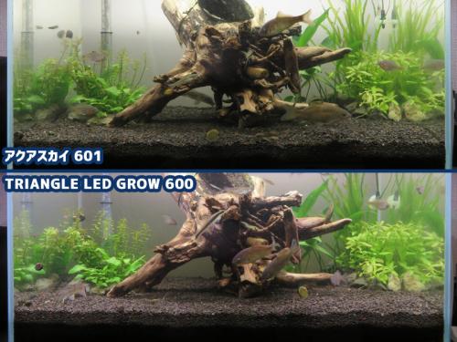 アクアスカイ601とTRIANGLE LED GROW 600の違い